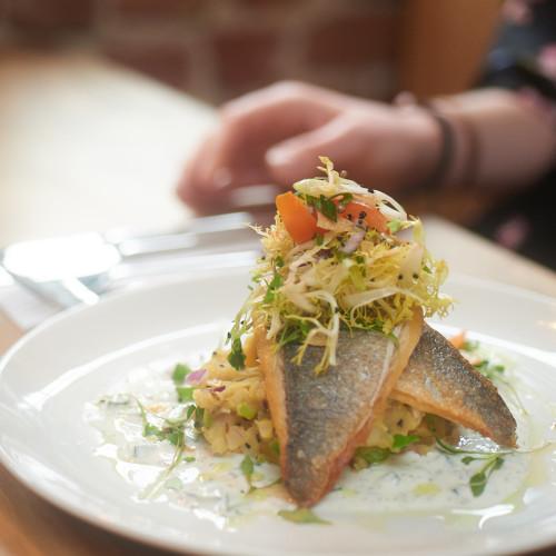 fish-dish
